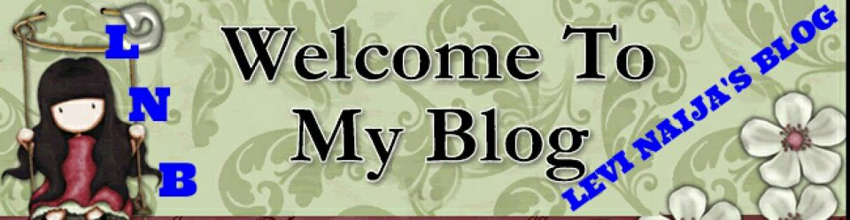 WELCOME TO LEVI NAIJA BLOG
